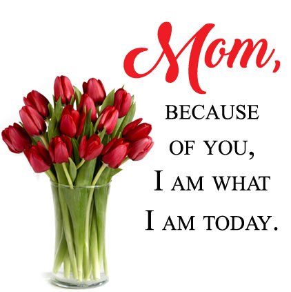 Mom Importance Profile Pics