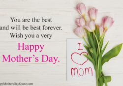 Lovely Cute Images with Rose Flowers for Mothers Day